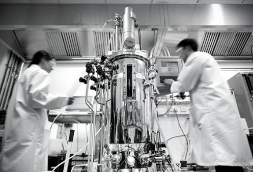 Exploring the benefits of process Raman spectroscopy